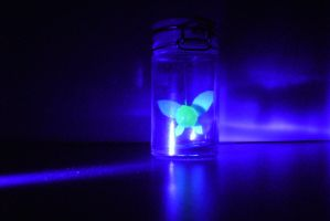 Bottled Fairy at Night by The-End-Inc
