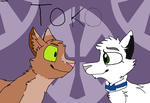 Toko Shipping Contest Entry by JustCalltWhatYouWant