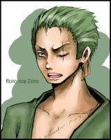 Roronoa Zoro. One Piece by HosomiAme