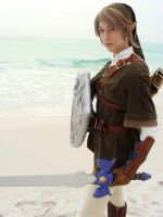 Link's Day at the Beach1 by LinkInSpirit