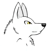 White wolf by MoonStonePack