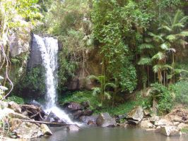 mt tamborine water fall by emyloy