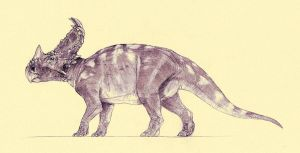 Sinoceratops by Kahless28