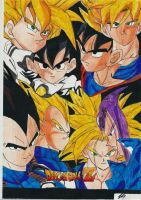 Dragon Ball by Pick45Art