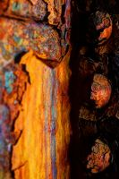 Rivets and Rust #1 by JFredona