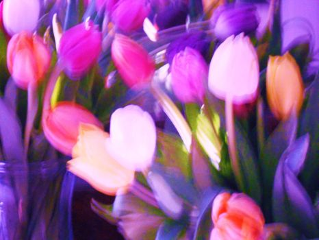Abstract Tulips by Artiqueryrose