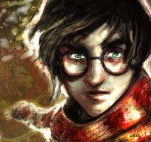 harry potter I by LeksaArt