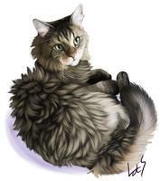 Fur Practice by revioLATE