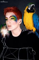 Parrot Fashion II by Kimberly-M