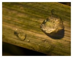 Ice Droplet II by tjackson80
