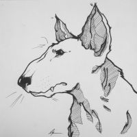 Bull Terrier in Ink by icantreid