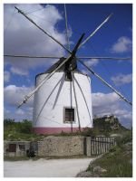 Windmill by Lucas-Coito