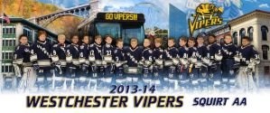 WESTCHESTER VIPERS, SQUIRT AA poster by cheapshotlou