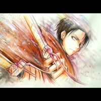 Levi by ShelindaArt