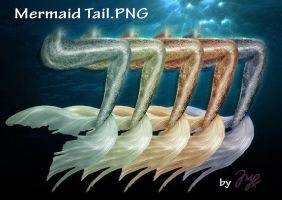Mermaid Tail PNG by Maryneim
