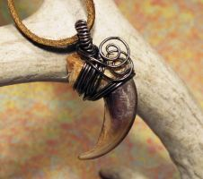Ghost Wolf Wire Wrapped Wolf Claw Pendant by MorRokko