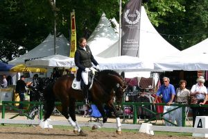 Dressage Competition Stock 3 by LuDa-Stock
