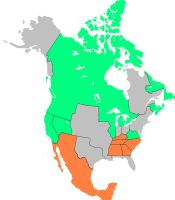 Great War, North America by lamnay