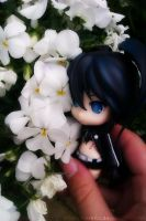 Black Rock Shooter with the flowers. by Merellia