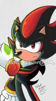 Shadow the Hedgehog by Robie-Chan