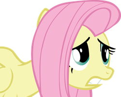 FlutterScared by aruigus808
