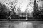 Rainy Day by pigarot