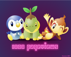 1000 Pageviews by Concore