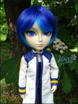 Kaito by Poison-Lady