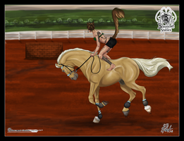 BSTC - Sunny, Show Jumping by Baringa-of-the-Wind
