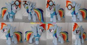 Rainbow Dash in winter wrap ut outfit and googles by calusariAC