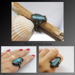 Muirin- wire wrapped copper ring by mea00