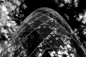 Reflective Gherkin by l8