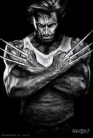 Wolverine sketch by SamanthaLi