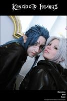 Xemnas and Saix by pepelone