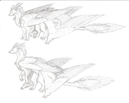 Mountain dragon sketches, standing positions. by turnipBerry