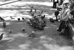 Pigeon Social In the Park 6 by Miss-Tbones