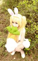 White Bunny (5) by Book-No00