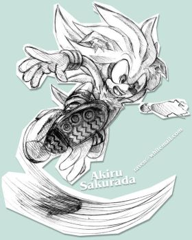 Sonic :: Wh...What the... by AkiruNyang