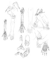 Hands 2 by Aleph777