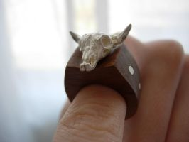 skull ring by vivalarobots