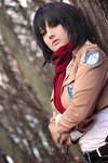 Mikasa Ackerman - a merciless yet beautiful world by Mizukishou