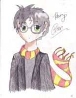 Harry Potter by AmmyWolf95
