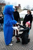 propose to the cookiemonster by nanda-o-X