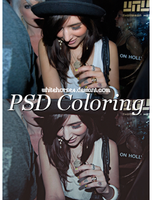 PSD Coloring Number 11 by whitehorse4