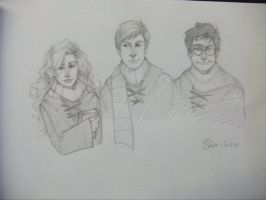 Hermione - Ron - Harry by Shiva-Anarion