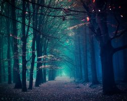 A Dream Upon Waking by Oer-Wout