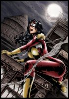 Spider Woman by Seabra