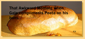 Hunger Games Awkward Moment by TributeCI