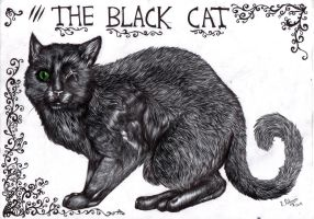 The Black Cat by FuriarossaAndMimma