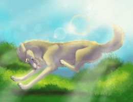 Sunny Day! by yoidore-tenshi